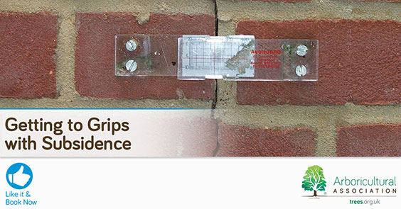 Getting To Grips With Subsidence