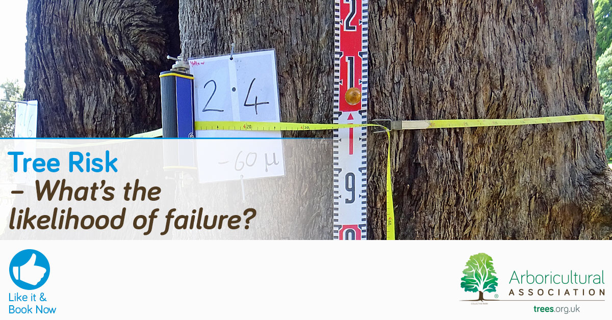Tree Risk - What is the likelihood of failure?