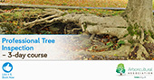 Professional Tree Survey and Inspection
