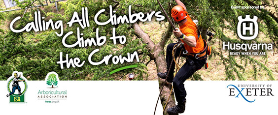 Can you climb to the crown?