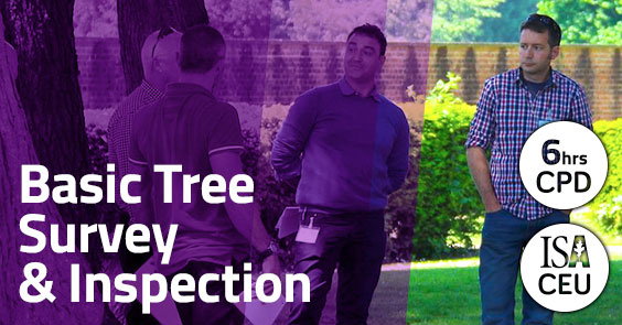 Basic Tree Survey and Inspection