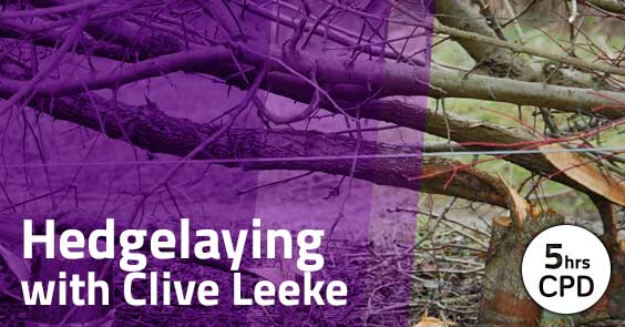 Hedge Laying With Clive Leeke