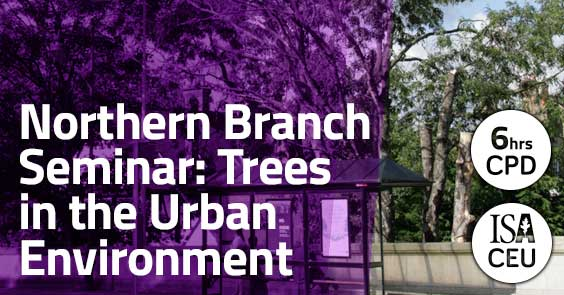 Trees in the Urban Environment