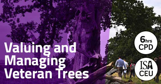 Valuing and Managing Veteran Trees