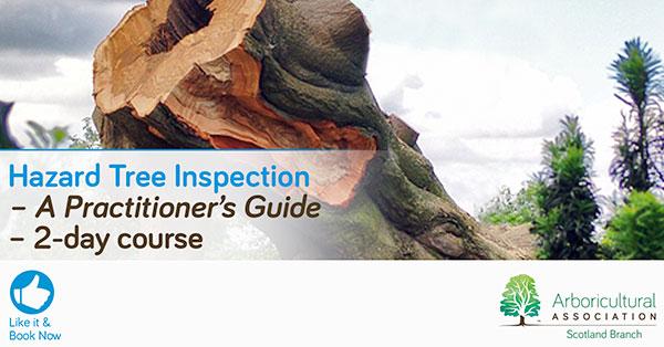 Hazard Tree Inspection Course