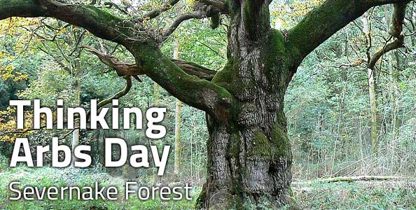 Thinking Arbs Day at Severnake Forest