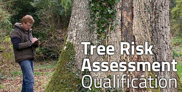 Tree Risk Assessment Qualification (TRAQ)