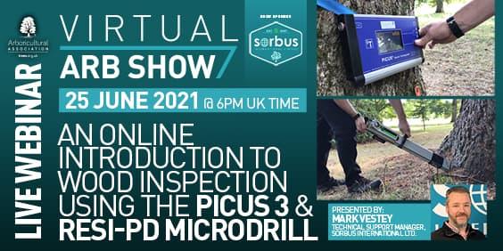 An online introduction to Wood inspection using the PiCUS 3 & Resi-PD Microdrill