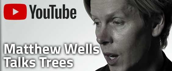 Matthew Wells Talks Trees on YouTube