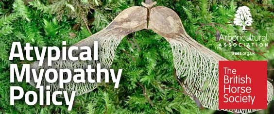 Atypical Myopathy Policy