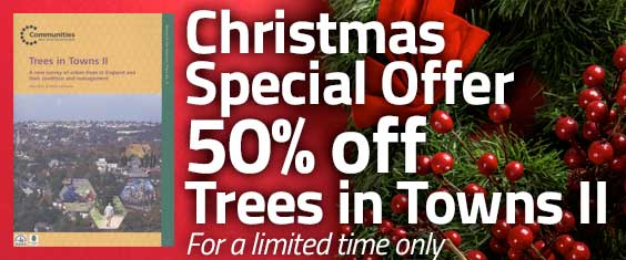 Christmas Special Offer – 50% off Trees in Towns II – For a limited time
