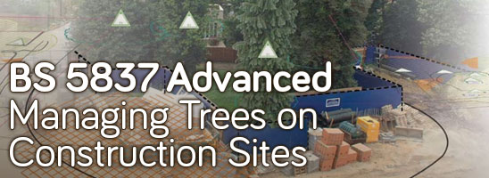 BS 5837 Advanced: Managing Trees on Construction Sites