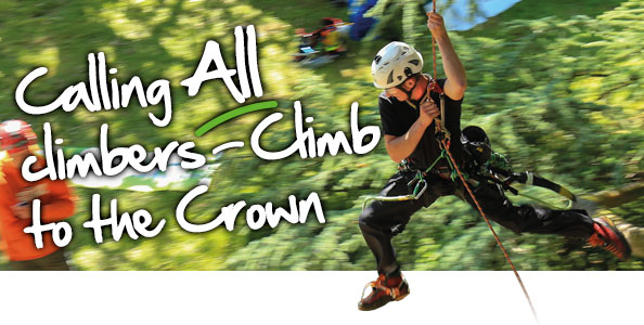 Calling All Climbers – Climb to the Crown