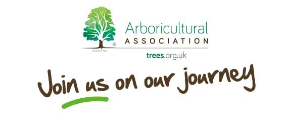 The Arboricultural Association – Join us on our Journey