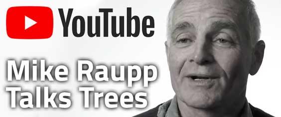 Mike Raupp – Talking Trees