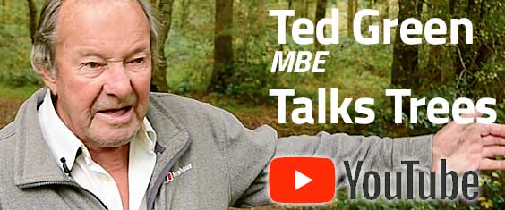 Ted Green MBE Talks Trees on YouTube