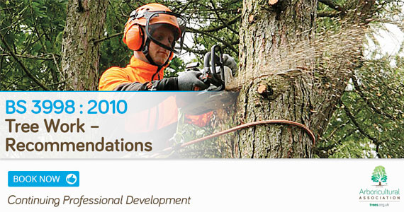 BS 3998:2010 Tree Work – Recommendations