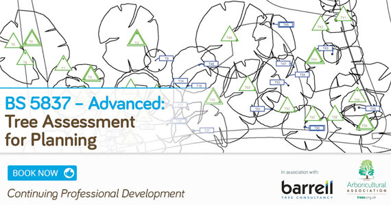 BS 5837 – Advanced: Tree Assessment for Planning
