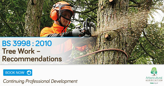 BS 3998: 2010 Tree Work – Recommendations