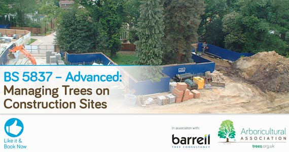 BS 5837 – Advanced: Managing Trees on Construction Sites