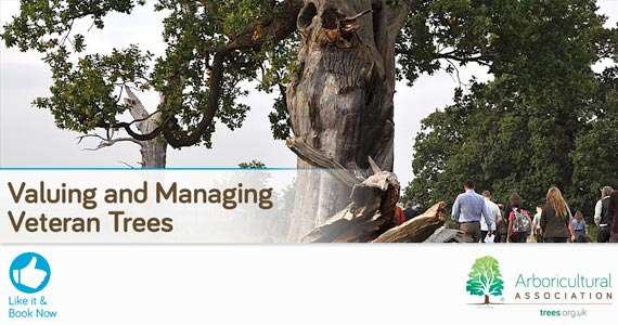 Valuing and Managing Veteran Trees