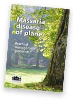 The Massaria disease of plane guide