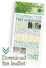 A Guide to Qualifications and Careers in Arboriculture