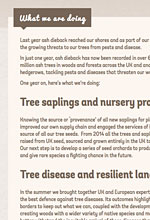 The Woodland Trust website page