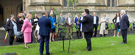 All-Party Parliamentary Gardening and Horticulture Group