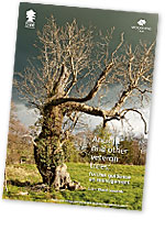 Ancient and Other Veteran Trees - new publication