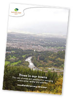 Your Town Needs More Trees