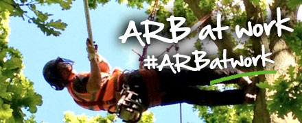 Photo Contest - Arb at work