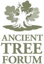 Ancient Tree Forum Vacancy