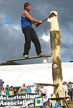 The National Forest Wood Fair 2012