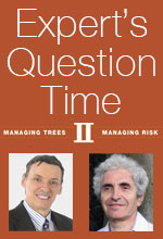 Expert's Question Time II