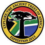 Explore the Ancient Trees of Africa