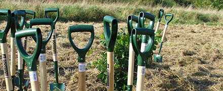 New Woodland Capital Grants on offer