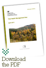 Click to download the Tree Health Management Plan