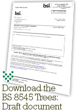 The BS 8545 draft document