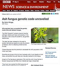 The BBC News website ©copyright BBC 2013