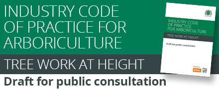 Industry Code of Practice for Arboriculture - Tree Work at Height: Available as a draft for public consultation