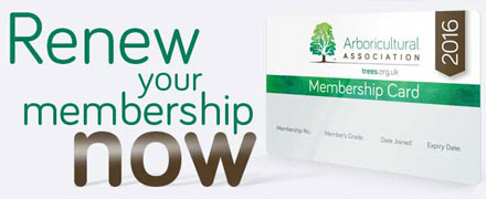 Renew your AA Membership for 2016 now
