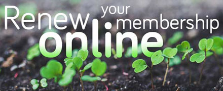 Online membership renewal now available